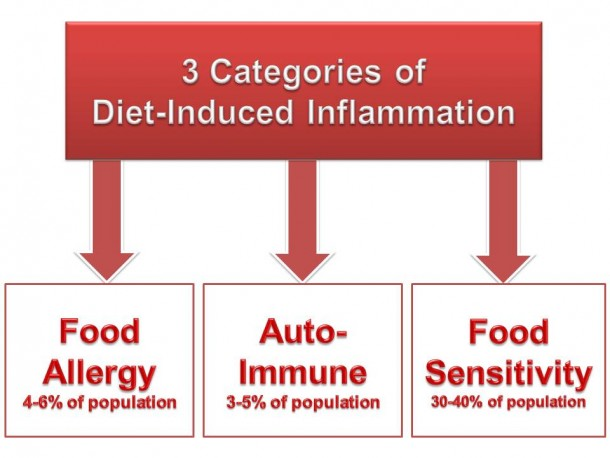 Understanding Diet-Induced Inflammation